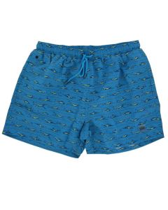 Hugo Boss blue patterned pair of swim shorts.