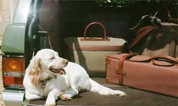 Purdey LEATHER & TRAVEL